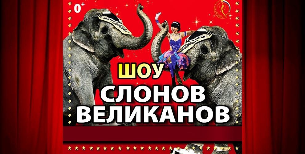 """Билеты на грандиозное представление """"Шоу слонов-великанов"""""""