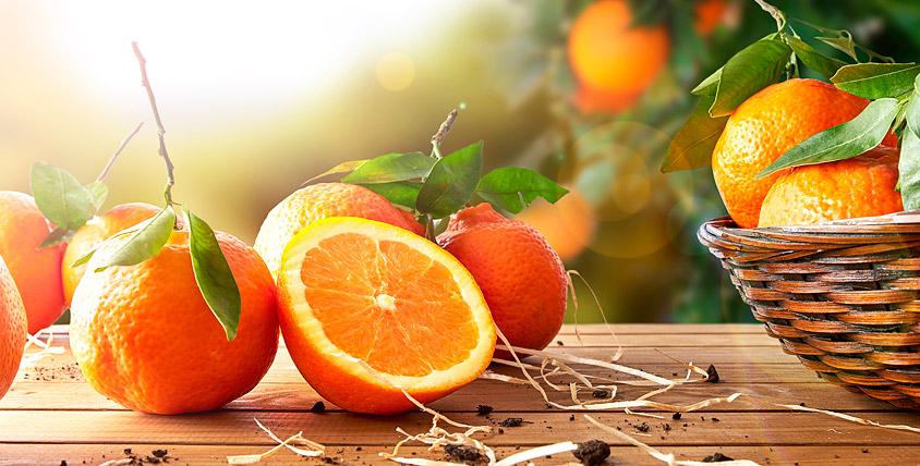 """5 кг апельсинов + абонемент на любое направление в мастерскую """"Счастливый апельсин"""""""
