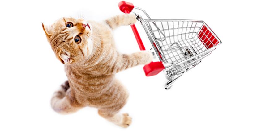 """3 сертификата общим номиналом 1500 руб. на товары для животных от сети магазинов """"Зверье моё"""""""