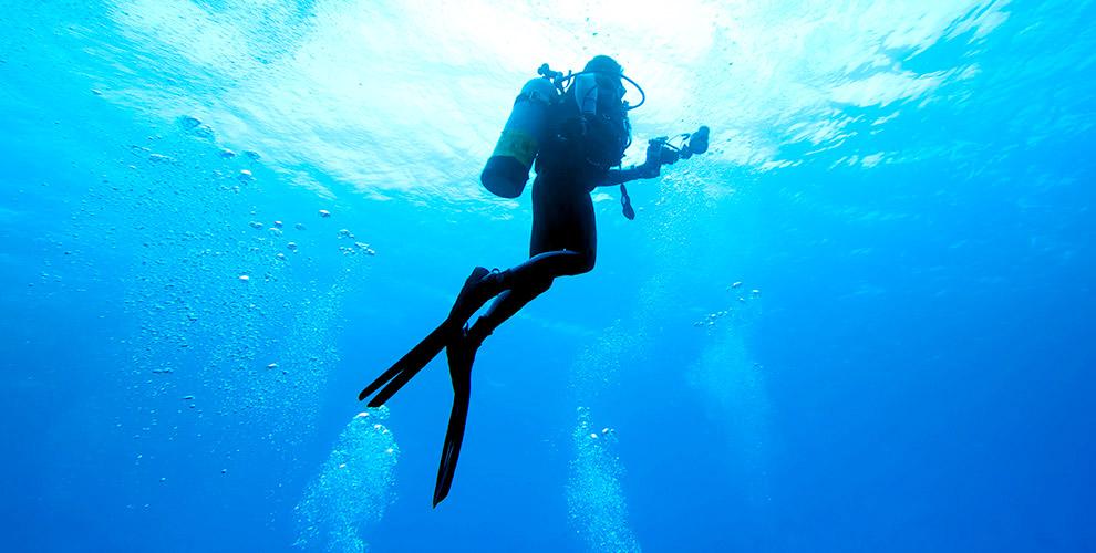 Пробное погружение с аквалангом от дайвинг-клуба «Океан»