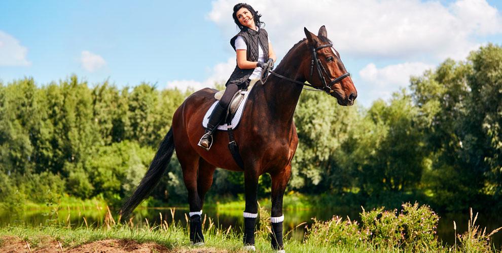 Катание на лошади, оздоровительная верховая езда и другое в клубе «Добрая Лошадка»