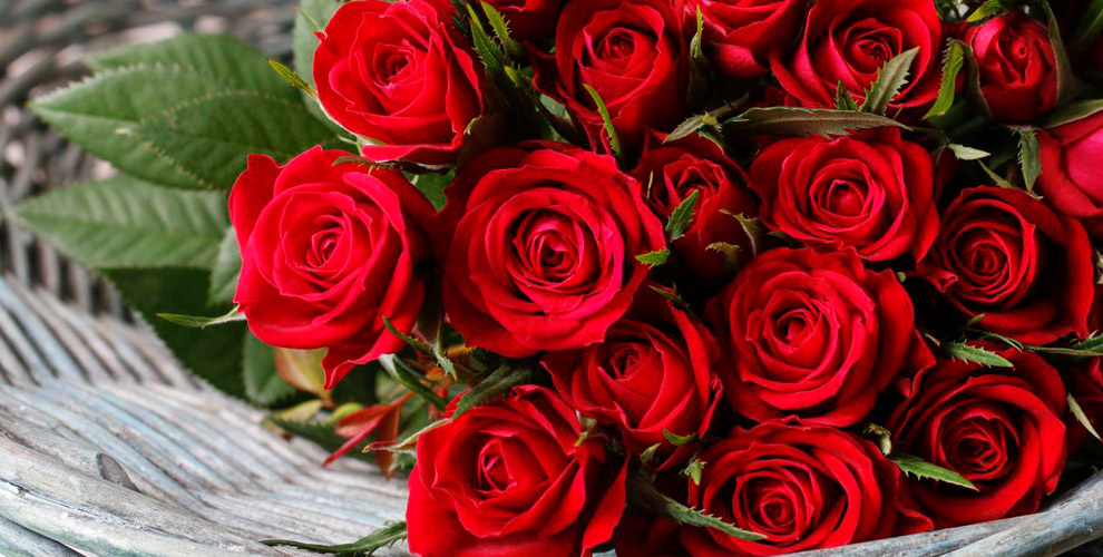Букеты из роз, амариллисы, лилии и другие цветы от салона «Лаванда»