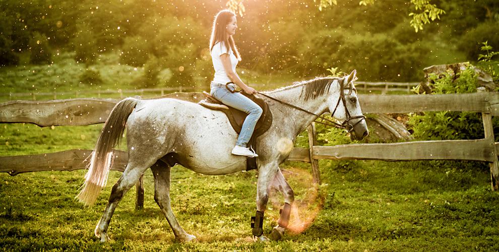 """Обучение верховой езде и фотосессия с лошадью от конного клуба """"Легенда"""""""