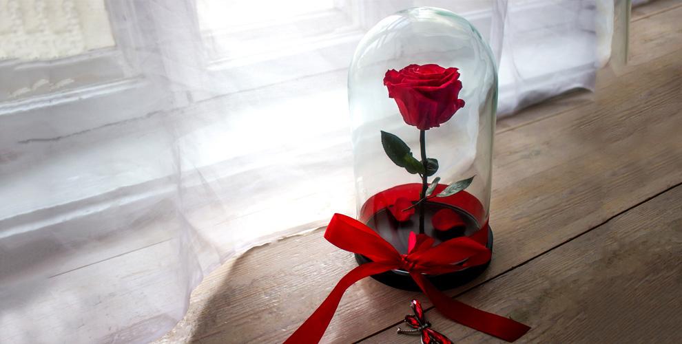 Стабилизированная роза в колбе и декоративная подвеска от компании Forever Rose