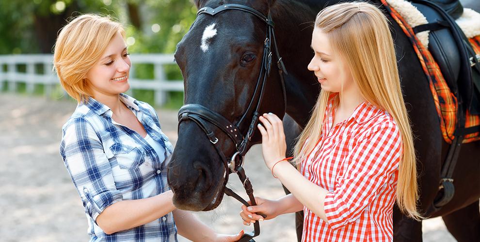 Экскурсии в конный клуб «4К» и катание на лошади