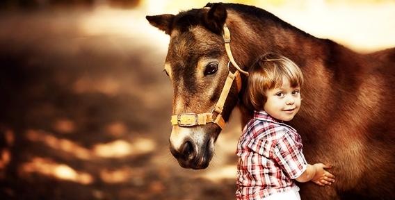 """Клуб """"Добрая Лошадка"""" - шквал эмоций и заряд бодрости! Катание верхом на лошади для взрослых и детей от 50 рублей"""