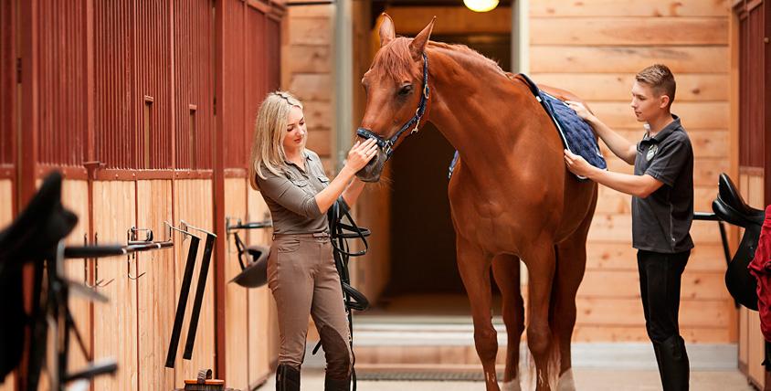 Обучение верховой езде и фотосессия с лошадью от фотографа Марии Стрелковой