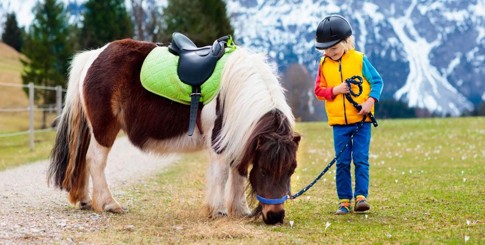 Компания «Мини пони»: прогулка впаркеиаренда пони дляфотосессии, фитнес длядетей