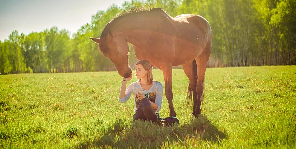 """Конные прогулки, обучение верховой езде и другое в  конном дворе """"Красавчик"""""""