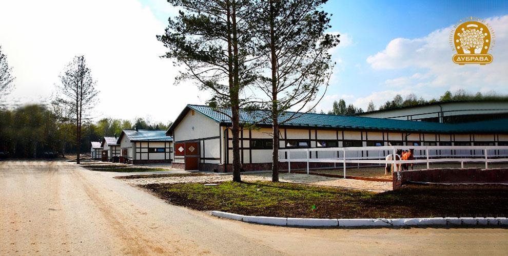 Экскурсия в конно-спортивном комплексе «Дубрава»