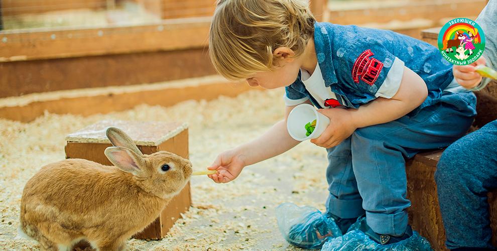 Билеты в контактный зоопарк «Зверюшки» в ТРЦ «Ривьера» для взрослых и детей
