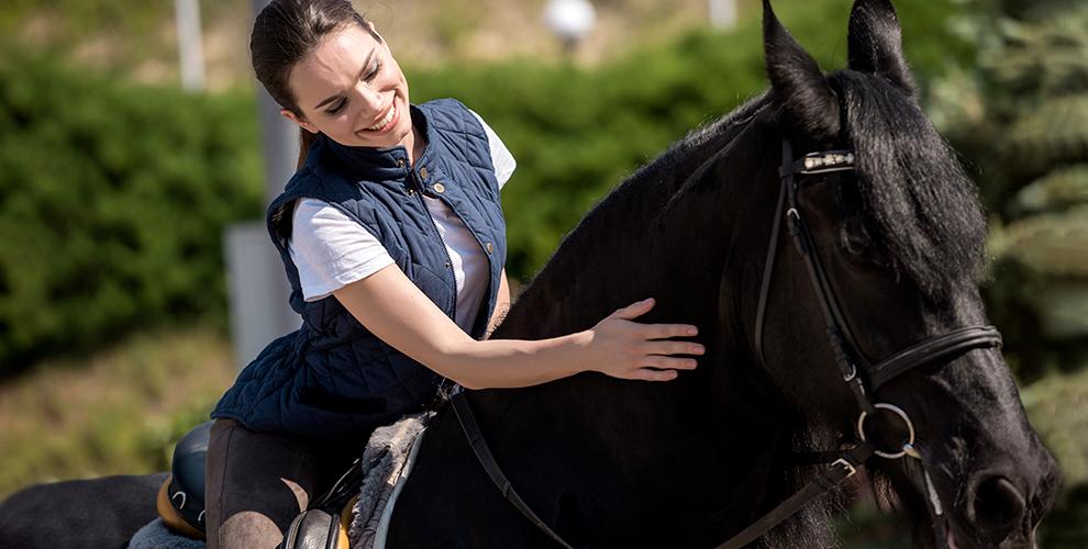 «Солнечный конь»: занятия по верховой езде, аренда лошади, конный кружок