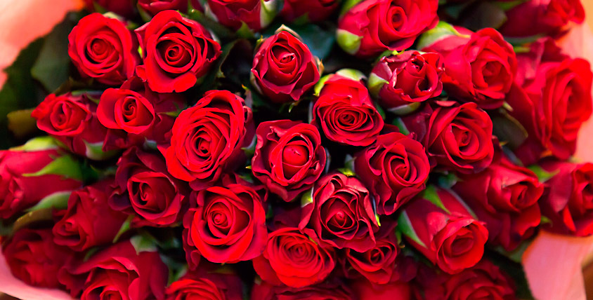 Любое количество роз и альстромерий от салона FlowerPiter