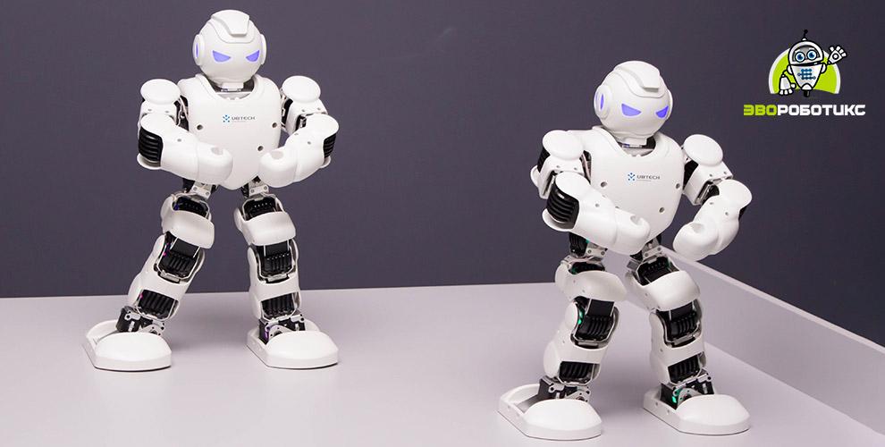 «ЭвоРоботикс»: интерактивная выставка роботов и проведение дня рождения