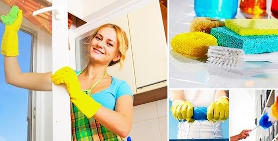 """Химчистка мебели, ковров, генеральная уборка, мытье окон и удаление запахов животных от компании """"Клининг Профессионал"""""""