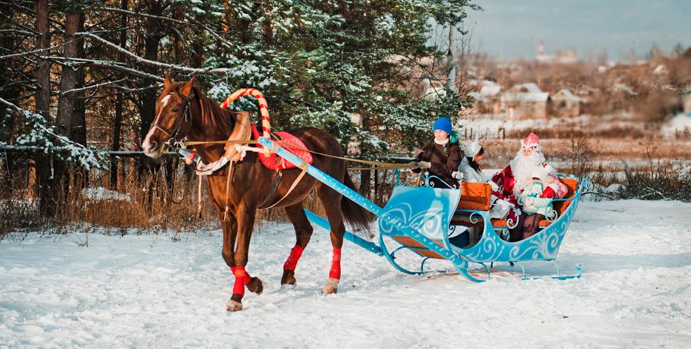 «Фаворит»: катание налошади илипони, новогоднее представление