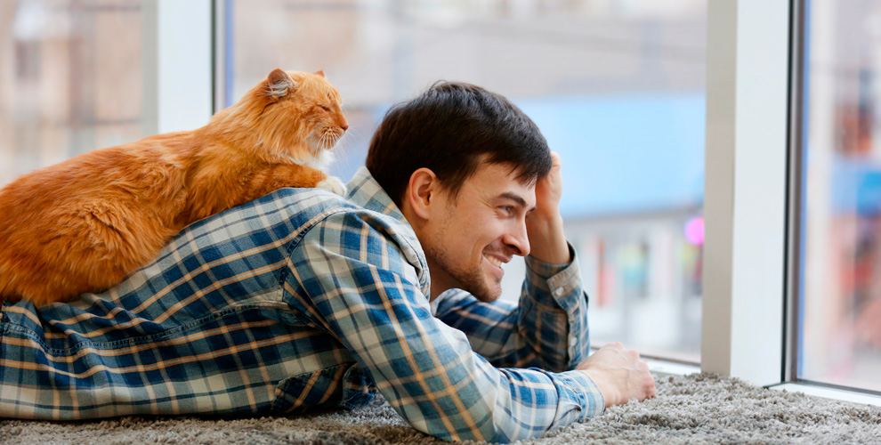 Общение с животными и отдых у камина в тайм-клубе «Теплые друзья»