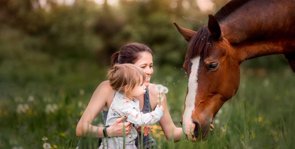«Космос»: конные прогулки, обучение верховой езде, катание напони ииппотерапия