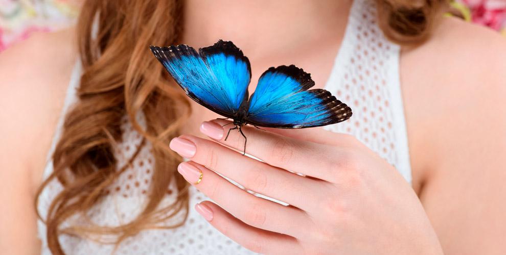 Билеты наконтактную выставку «Живые тропические бабочки» длявзрослых идетей