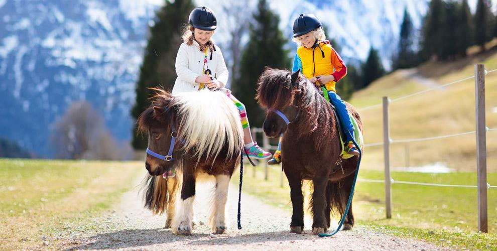«Пони-клуб»: экскурсия икатание налошади илипони длявзрослых идетей