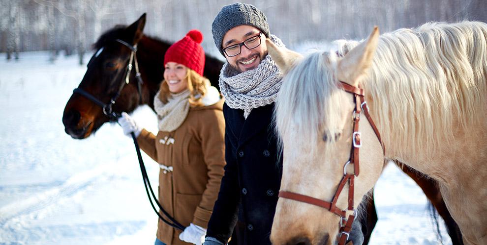 Индивидуальные занятия по верховой езде и аренда лошади в клубе «Солнечный конь»