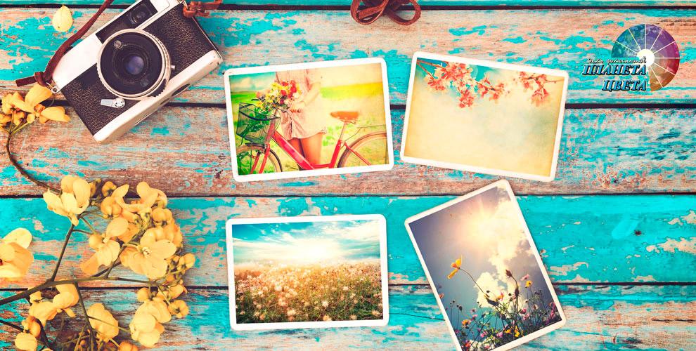 «Планета цвета»: печать фотографий, плакатов, чехлы длясмартфонов