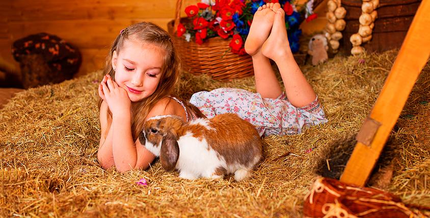 """Посещение городской фермы """"Лап-Ландия"""" для детей и взрослых"""