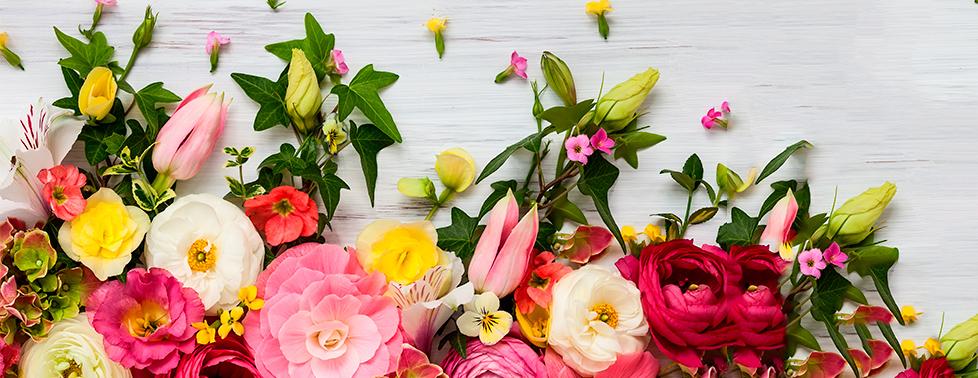 """Восхитительные и ароматные розы, лилии, ирисы, герберы и другие свежесрезанные цветы для вас в салоне """"Черника"""""""