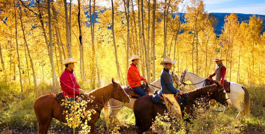 """Конная прогулка в конно-спортивном клубе """"Гвардия"""" от 285 руб."""