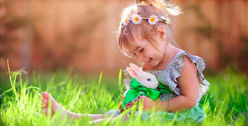 """Удивительный мир милых, пушистых и забавных животных! Билеты на посещение контактного зоопарка """"УтиПути"""""""