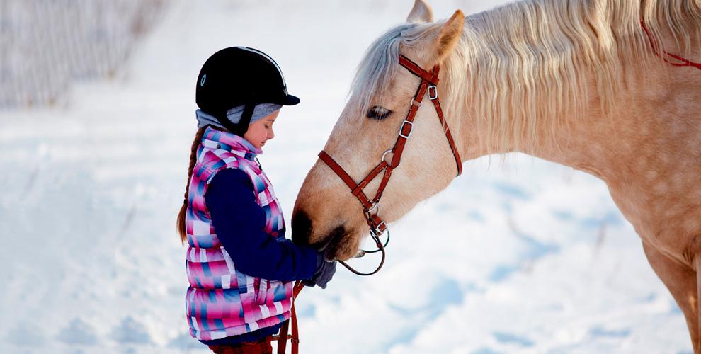 Прогулки на пони или лошади от зоофермы «Кирполье»