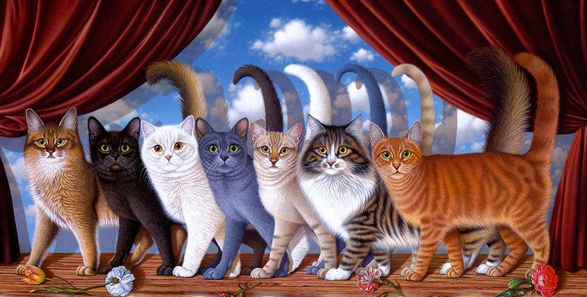 """КЛК """"Элиткэт"""" приглашает взрослых и детей на международную выставку кошек: билеты от 70 рублей!"""