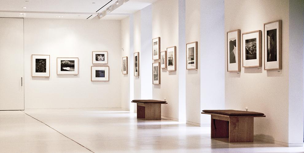 «Сибирская мемориальная картинная галерея»: билеты сэкскурсией длявзрослых идетей