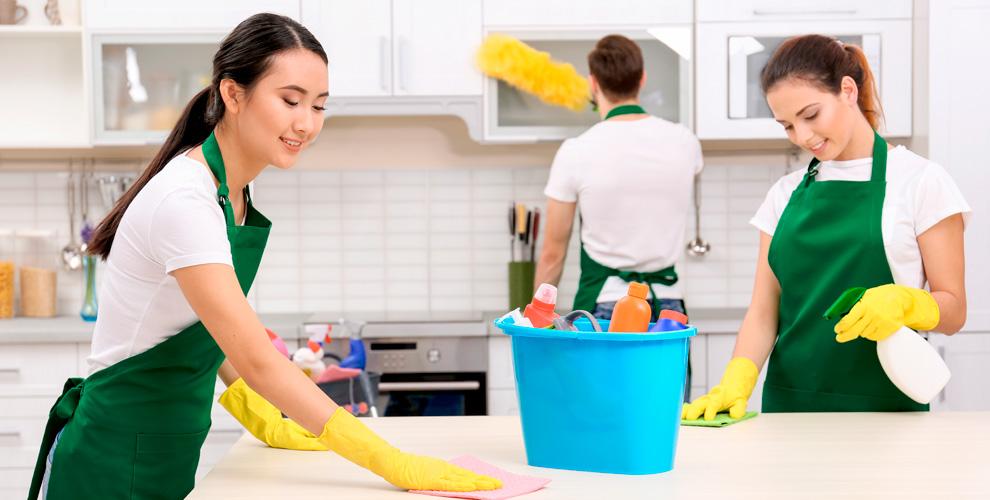 Генеральная уборка квартир икоттеджей откомпании «Леди Бак»