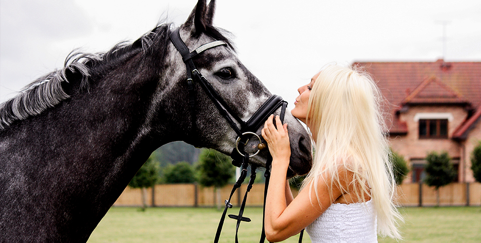 Катания на лошади, верблюде и пони для детей и взрослых от конного клуба «Комета»