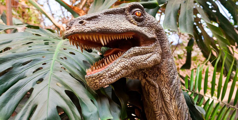 Билеты на представление «Динозавр-Шоу» для взрослых и детей