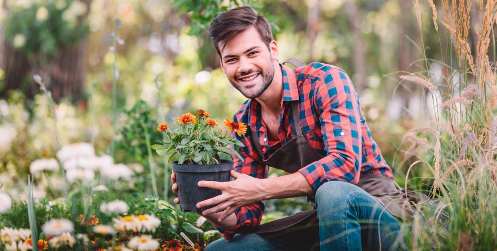 Услуги садовника, саженцы клена, сосны, укладка газона откомпании Landsaft74