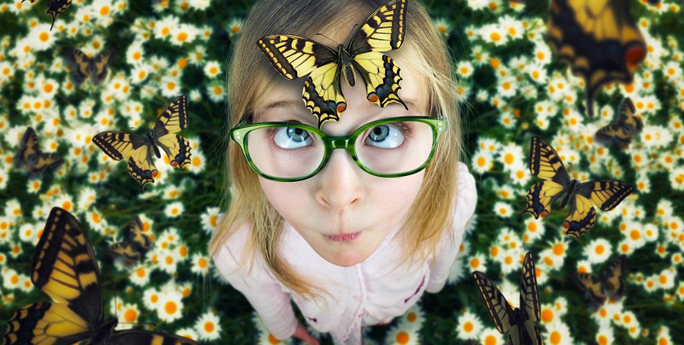 """""""Дом бабочек"""": билеты на посещение выставки бабочек для взрослых и детей"""