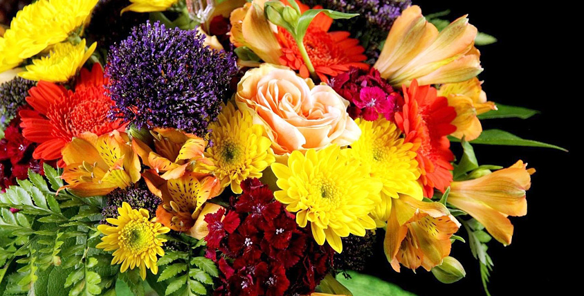 Розы, герберы, лилии, кустовые хризантемы, альстромерии и шикарные букеты от цветочного магазина Dianea