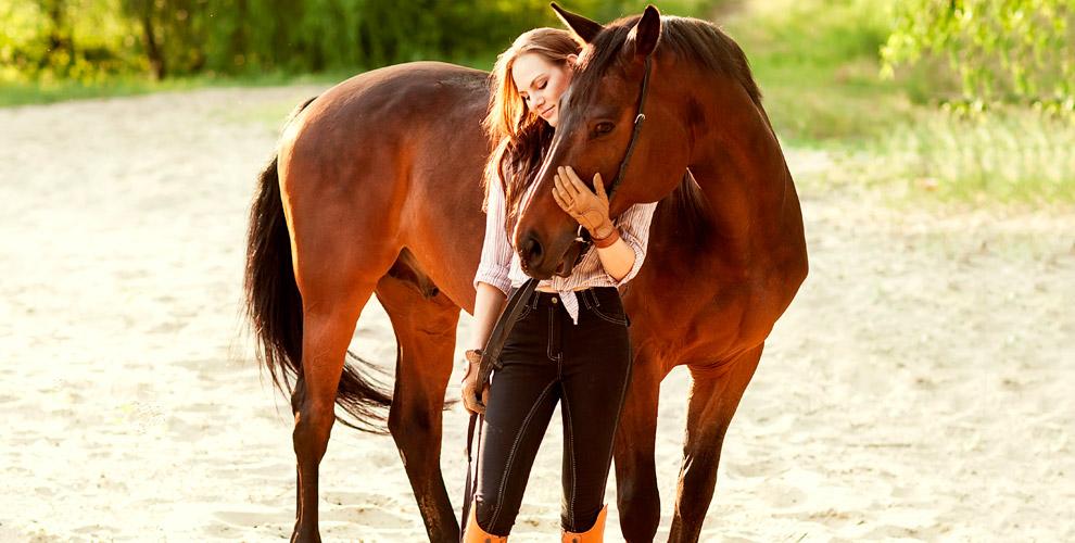 Прогулка на лошади, тренировка и фотосессия в клубе «Усть-Ижора»