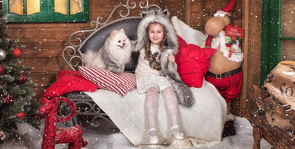 Индивидуальная или семейная фотосессия в новогоднем интерьере от фотостудии «Зебра»