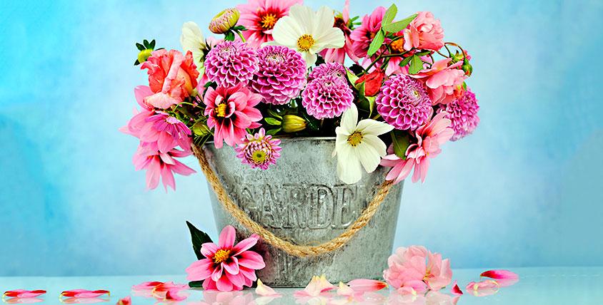 """Вместо тысячи слов! Роскошные букеты, розы Эквадор, лилии, ирисы и лепестки роз от цветочной лавки """"Лавандыш"""""""