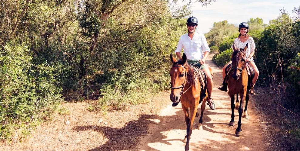 """Прогулка на лошади по лесу, баня и билет в контактный зоопарк """"Фаворит"""""""