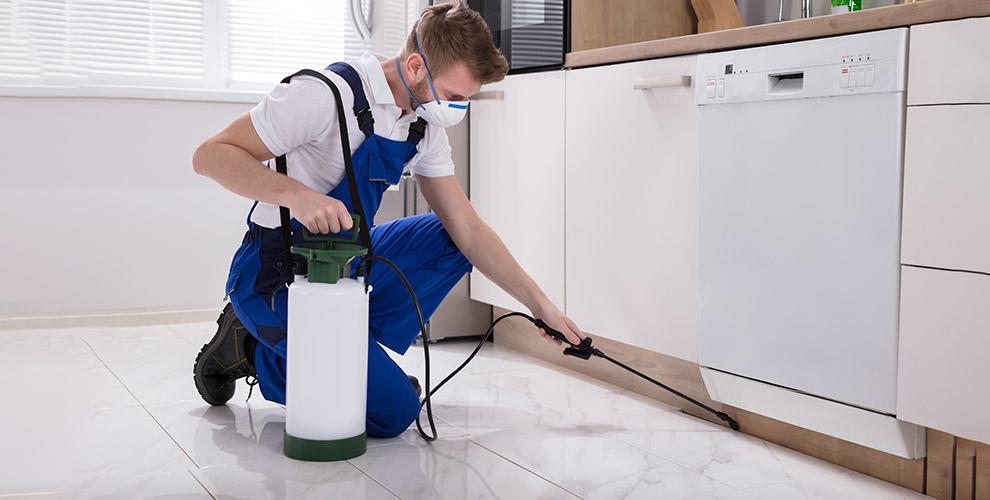 Дезинсекция, дезодорация квартиры и другое от компании «Эколог-центр»
