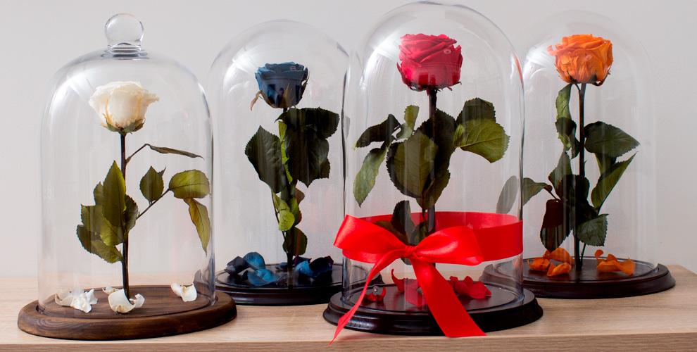 Стабилизированная роза в колбе в подарочной упаковке от компании Unique Rose