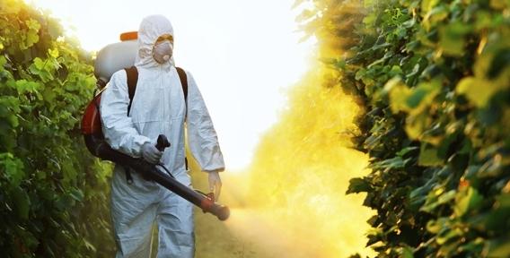 """Проведение обработки от клещей или комаров для физических и юридических лиц от компании """"Чистый Город"""""""