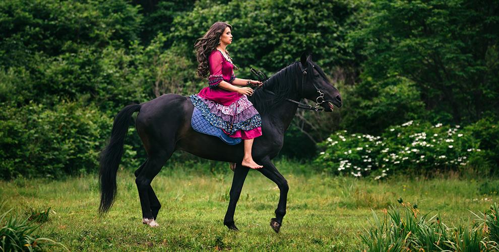 Обучение верховой езде, конная прогулка, тренировка поконкуру вклубе Golden Horse