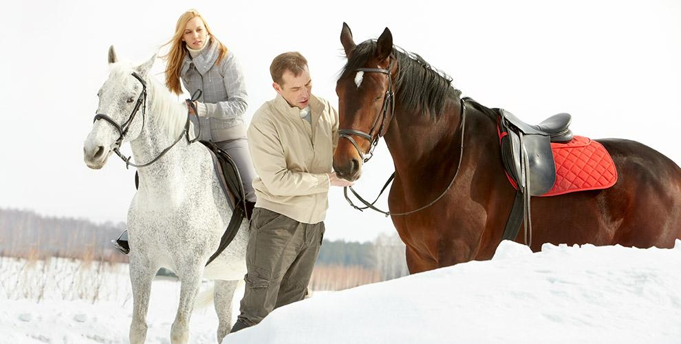 Интенсивные тренировки по верховой езде в конном клубе «Заповедное подворье»
