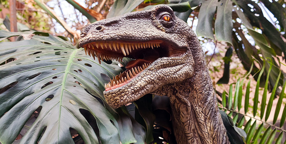 Посещение выставок «МирДинозавров» и«Мультилэнд» длявзрослых идетей
