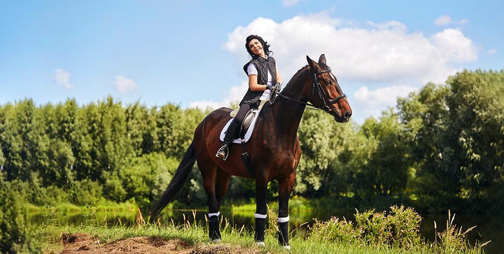 Клуб «Усадьба»: аренда лошади, занятия по верховой езде, конные прогулки и экскурсии